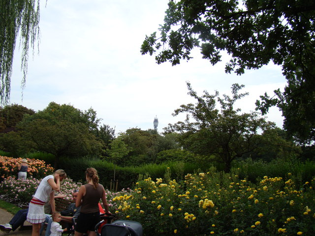 View of the BT Tower from the flower garden