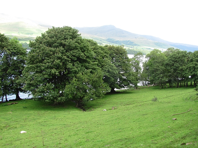 Grassland beside Loch Tay