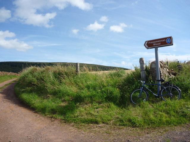 Rural East Lothian : Pressmennan Wood Road-end