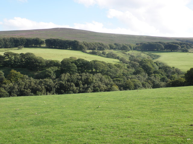 View across East Water Valley, to Dunkery Hill