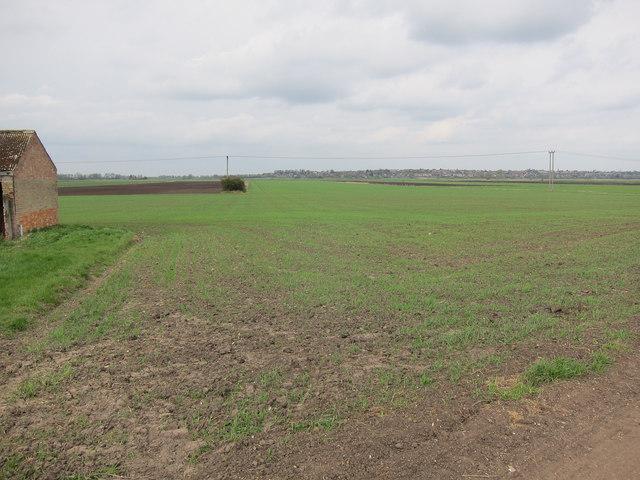 Fields by Galls Farm
