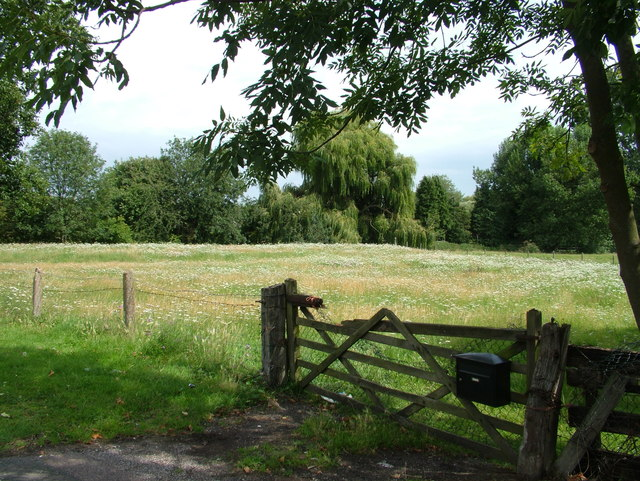 A field with a letter box