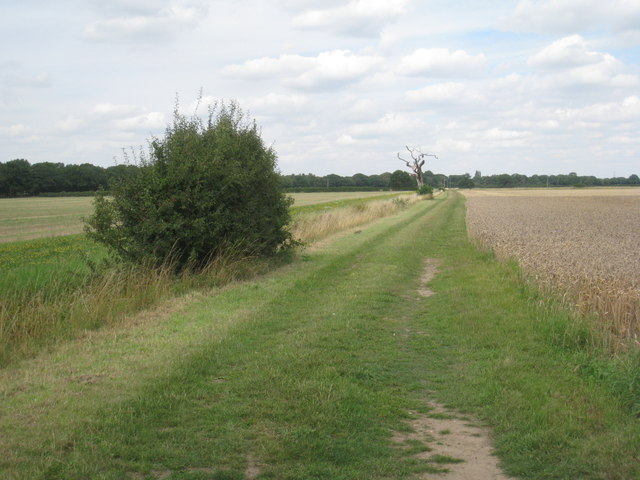 The footpath from Harby to Thorney