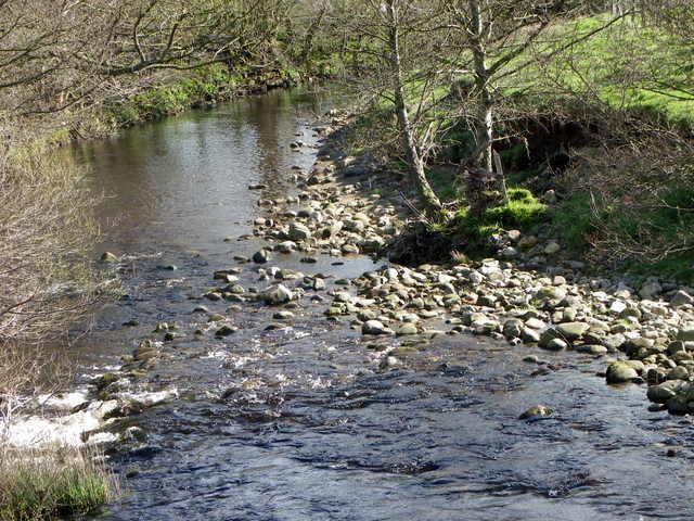 River Nidd near Lofthouse