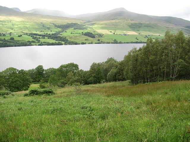 Woodland above Loch Tay