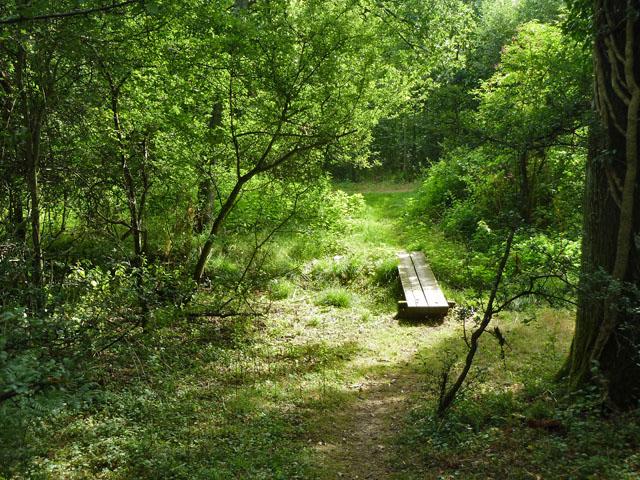 Footbridge, Thorn Common