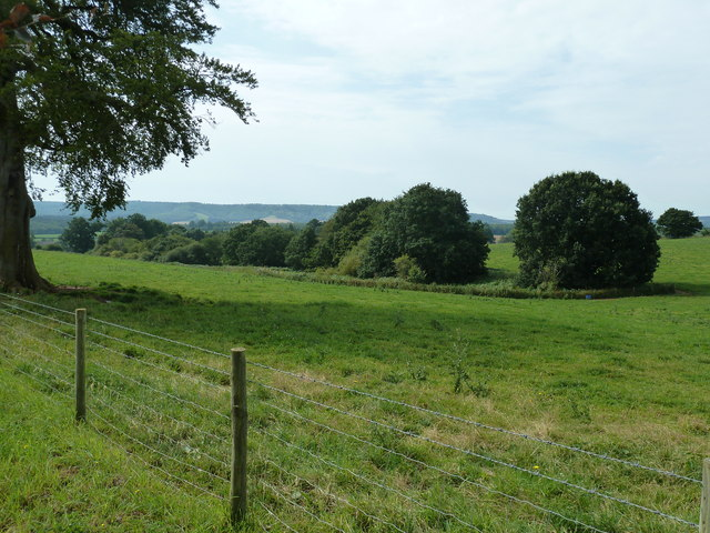 View SW across the Cowdray Estate