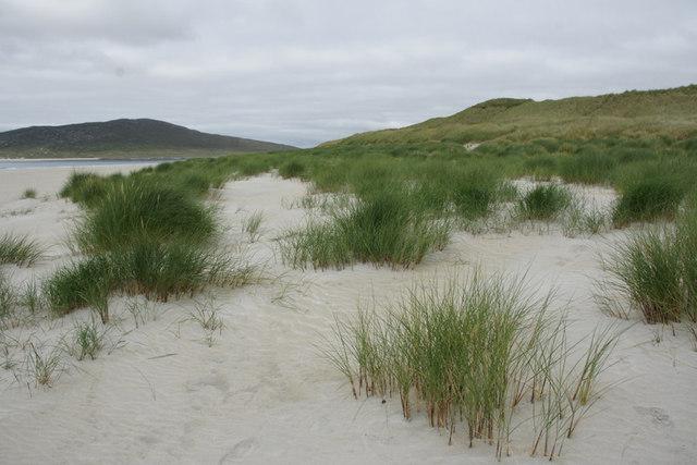 Embryonic dunes at Bruaichean Losgaintir