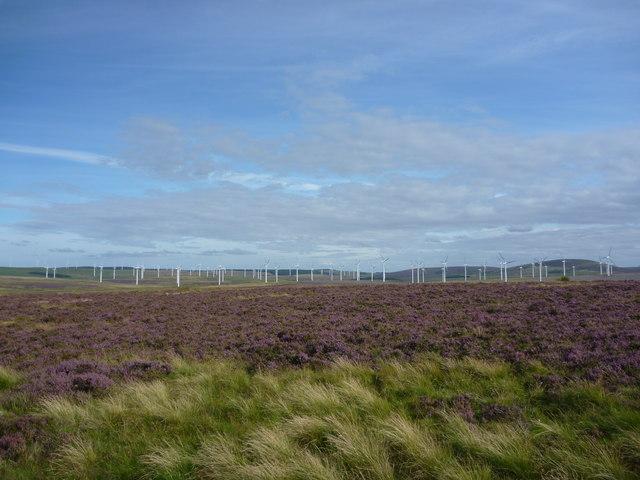 East Lothian Landscape : Another Bloody Windfarm!