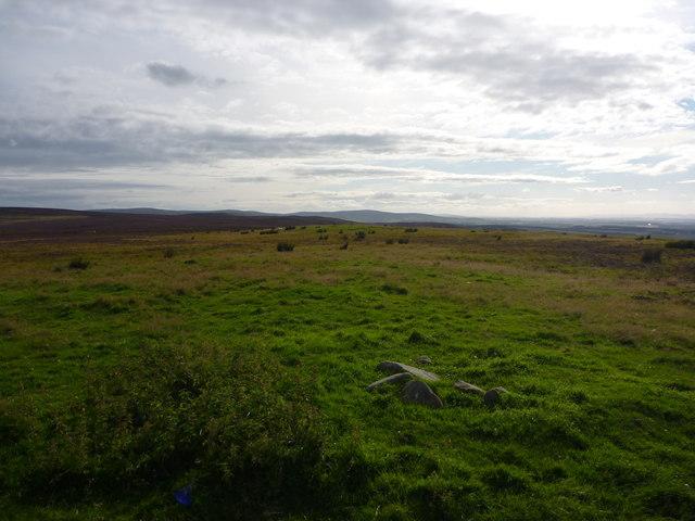 East Lothian Landscape : View South-West From Deuchrie Edge