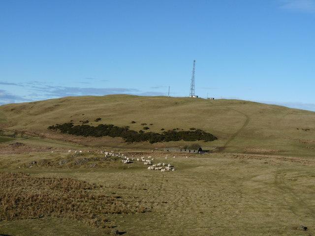 Lochton Hill