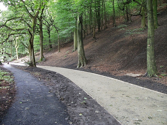 A new path for Dunwood Park