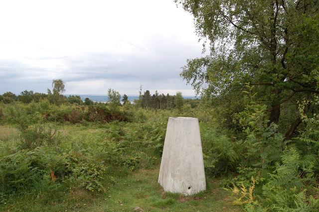 Trig Pillar Tidenham Park