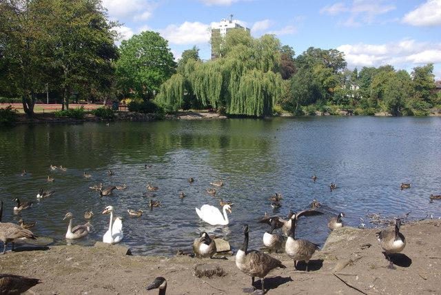 Hatherton Lake