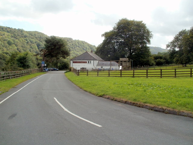 Wooded hillside, Glyntawe