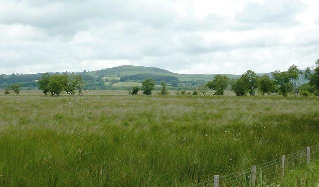 Across Cors Caron towards Swyddffynnon, Ceredigion