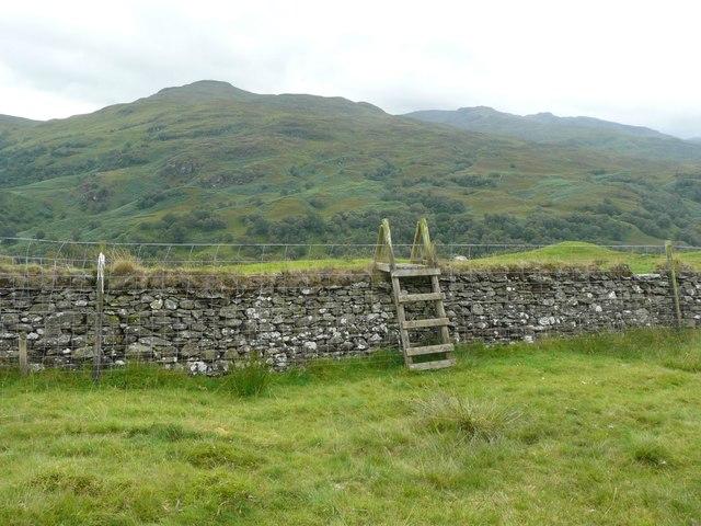 A useful stile over a deer fence