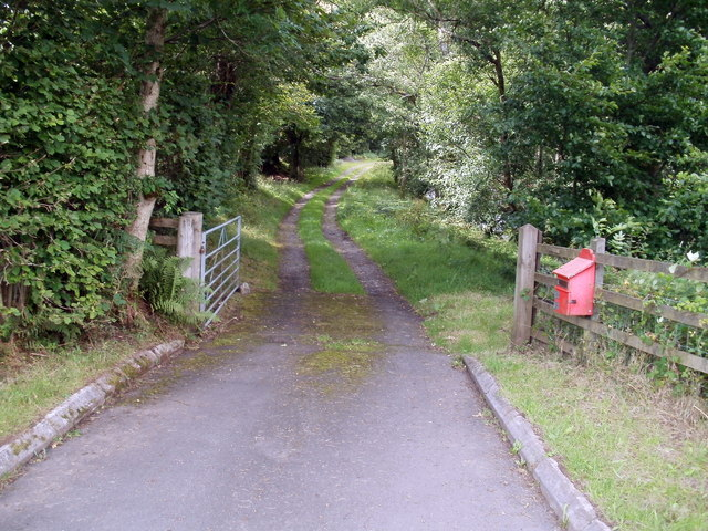 Track to Ty Henry Farm from the A4067, Glyntawe