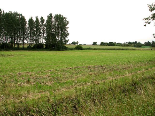 Fields by Broadwater, Parham