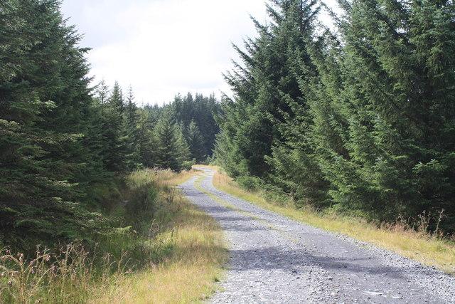 Forest track near Kirriereoch