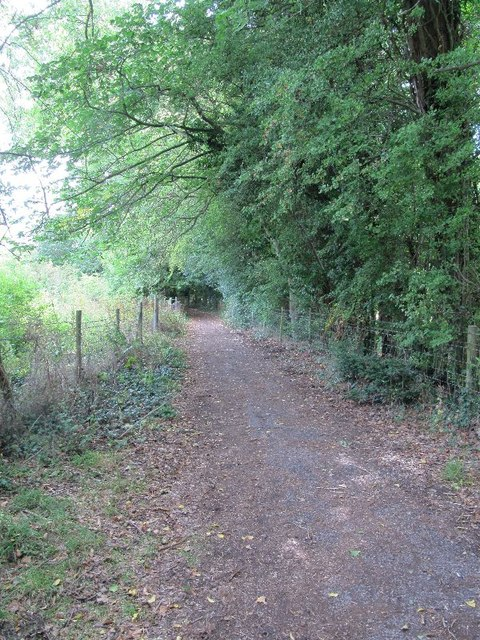 View along the footpath