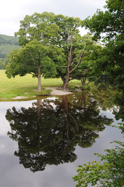 Trees reflected in the River Dee