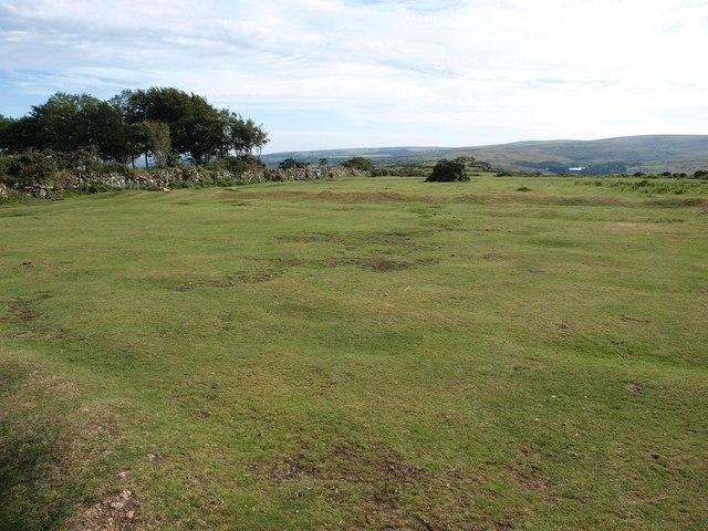 Grassy area at Bel Tor Corner, looking towards Venford Reservoir