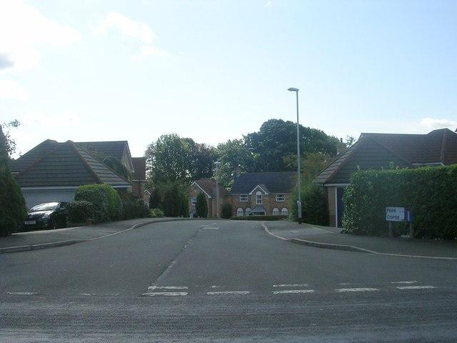 Park Copse - Hall Lane