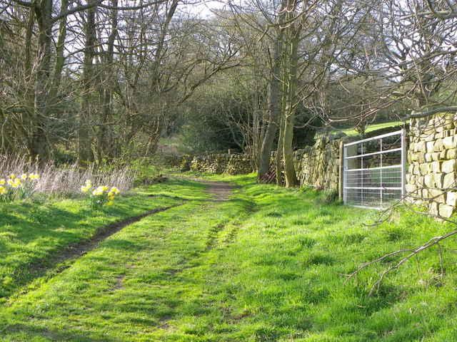 Bridleway near Blazefield
