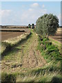 TM2133 : Farm track heading north by Roger Jones