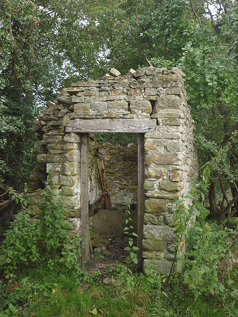 Outdoor toilet by ruined cottage