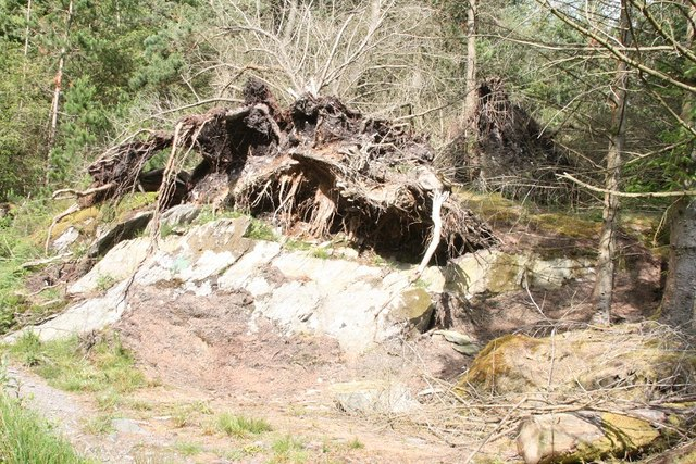 Rock Ripped at Betws y Coed