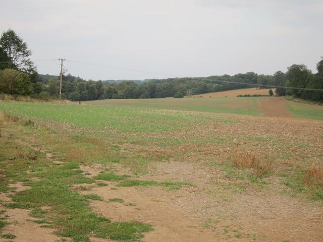 Field south of Doddington