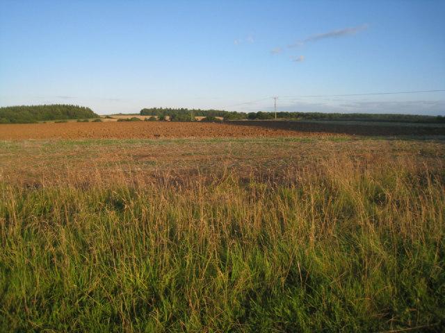 Harvested fields - Oakley
