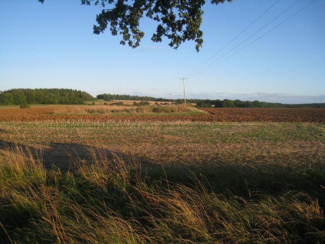 Fields west of Oakley Park