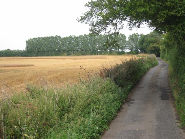 Elverland Road