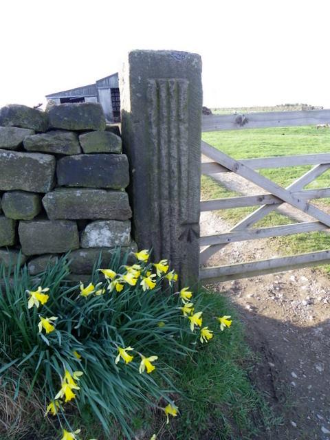 Bench Mark near Wilsill