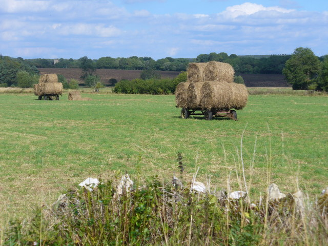 Harvest by Catsham Bridge
