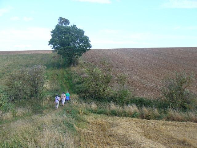 Rambling Towards Walcot