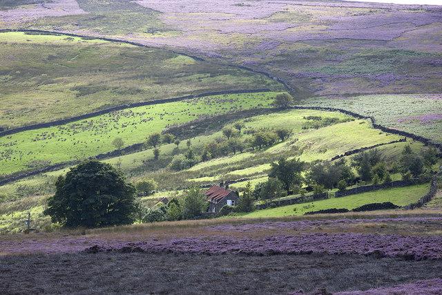 Highdale Farm