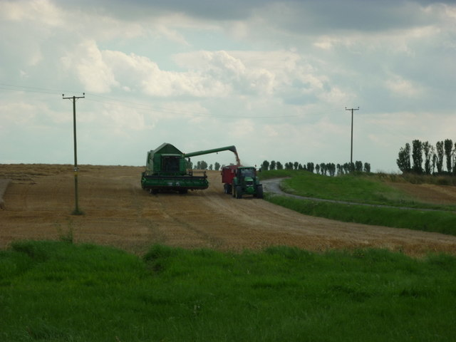 Harvesting near West Close Farm