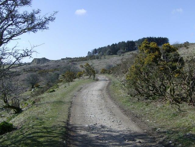 Track on Caradon Moor