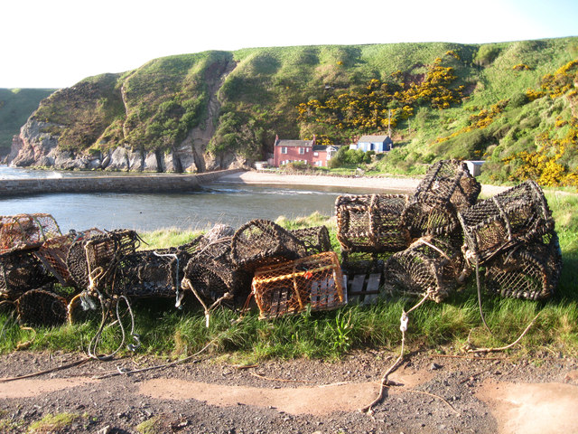 Creels at Cove Harbour