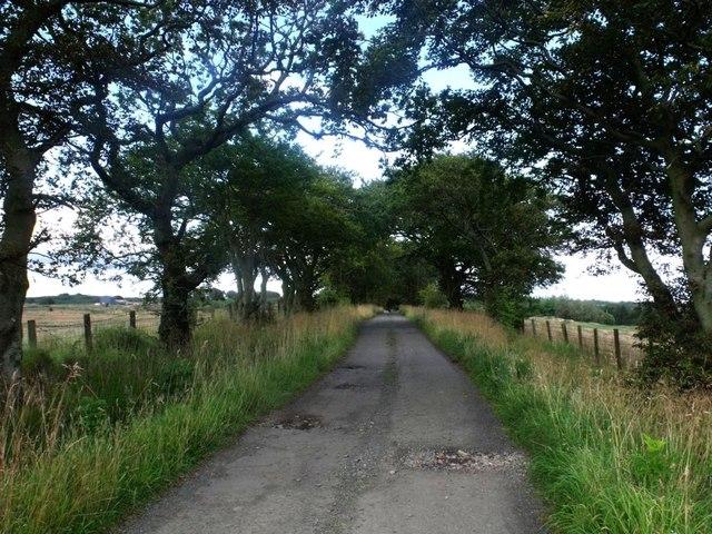 Threaprig, road to Jawcraig