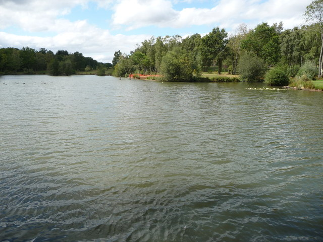 Fishery pool near the Wyre Forest