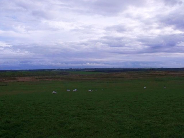 Jawcraig, grazing