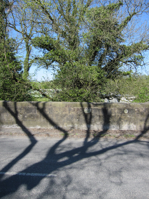 Shadows on Parkfoot Bridge