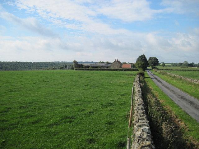 Rowan  Farm  and  David  Lane