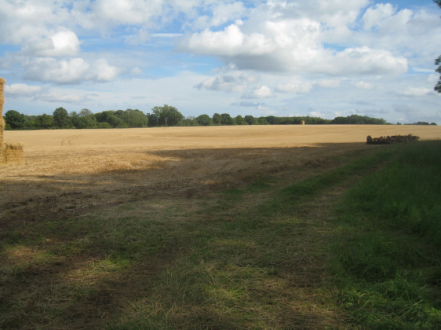 Harvested field by Pardown
