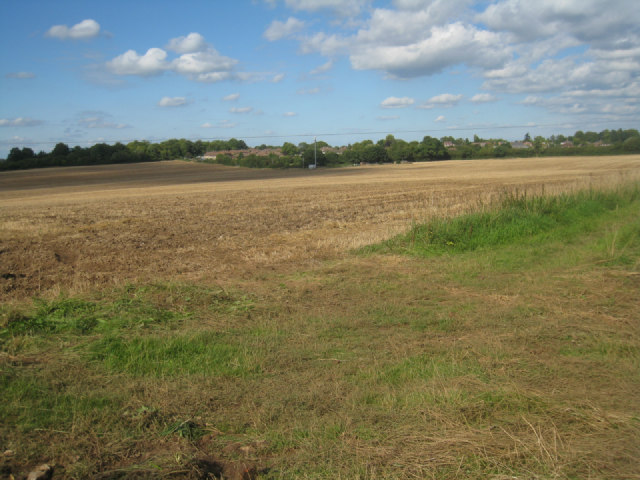 Harvested fields near Oakley